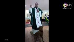 VIRAL - Un perro poco cristiano