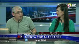 CORRIENTES - Alerta por Alacranes