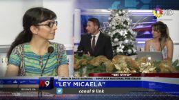 CHACO - Ley Micaela