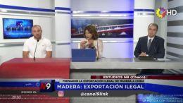 CHACO - Madera: exportación ilegal