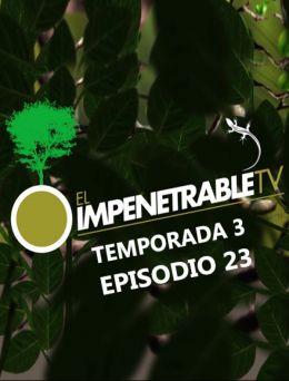 EITV | T :3 | E :23