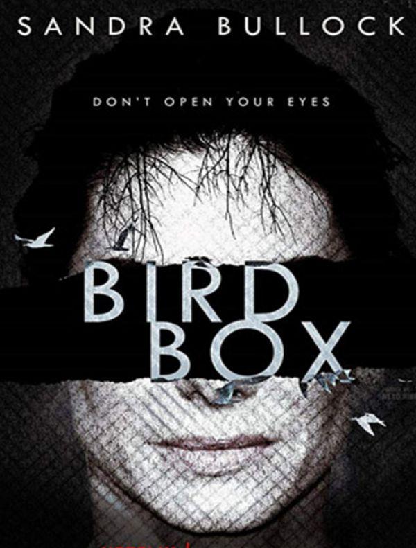 BirdBox - A Ciegas