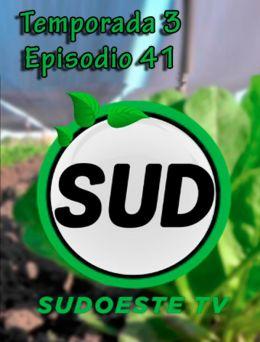 STV | T :3 | E :41