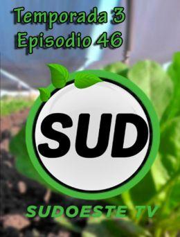 STV | T :3 | E :46