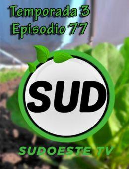 STV | T :3 | E :77